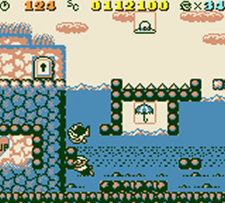 Later levels however had mario taking to the water and even the skies.